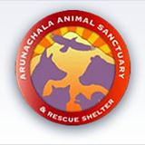 Arunachala Logo