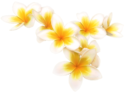 sweet_smelling_flowers